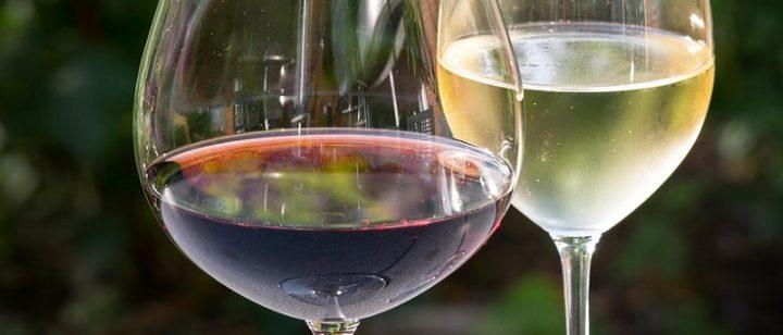 A la découverte d'un vin astringeant