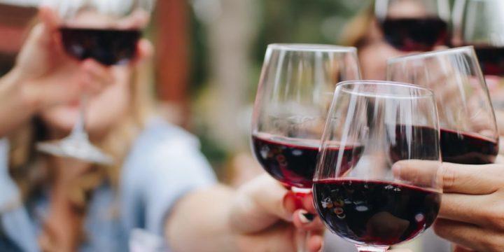 Les tanins dans le vin: tout ce que vous devez savoir pour les comprendre